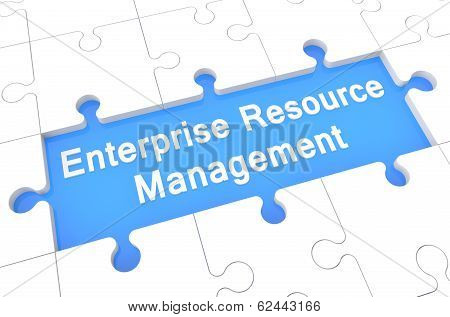 Enterprise Resource Management