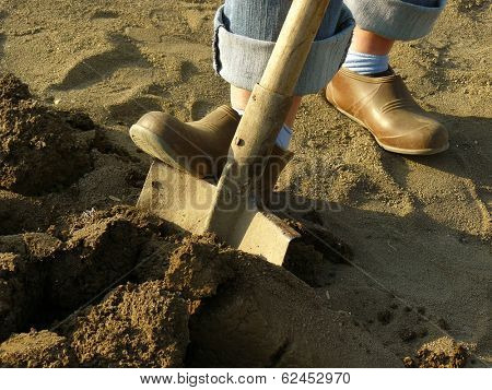digging soil with shovel in a spring garden