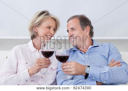 Portrait Of Mature Couple Toasting With Wine