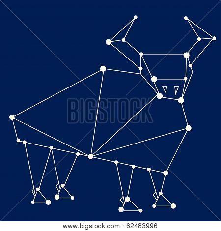 Taurus Zodiac Sign.
