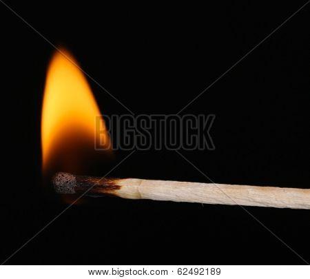 Burning match isolated on black