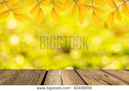 Spring Green Leaf With Bokeh And Sunlight And Wood Floo