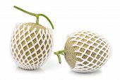 picture of ares  - Cantaloupe in net bag Isolated on white background - JPG