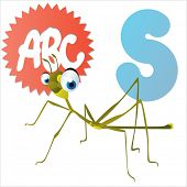 stock photo of stick-bugs  - S is for Stick - JPG