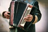stock photo of accordion  - The musician playing the accordion - JPG