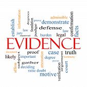 Evidence Word Cloud Concept