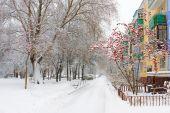 picture of novosibirsk  - Winter in Academgorodok Novosibirsk Russia - JPG