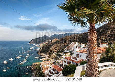 Catalina Island Resort And Avalon Bay