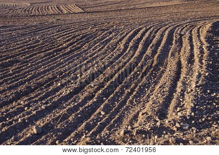 Cultivated Farm Field Soil Background