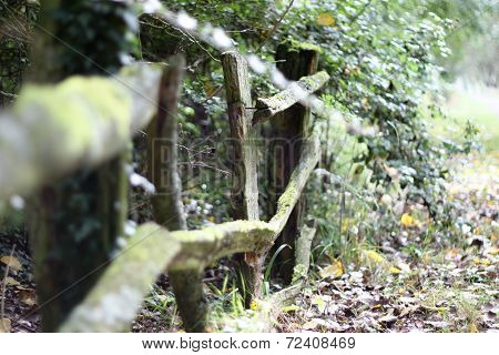An Old Broken Rickety Wooden Fence
