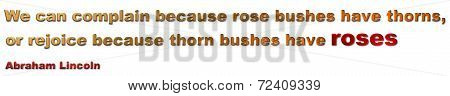 Thorns & Roses Quote - Abraham Lincoln