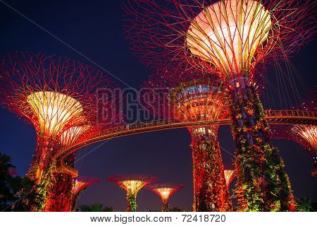 Singapore-sep 04: Night View Of The Supertree Grove At Gardens By The Bay On Sep 04, 2014 In Singapo