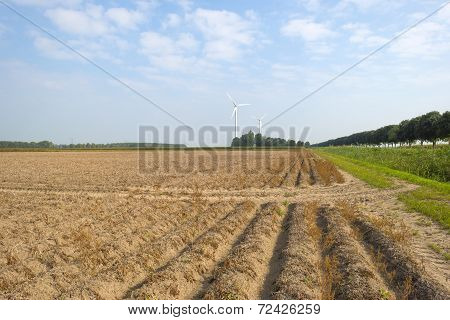 Furrows in a field at fall