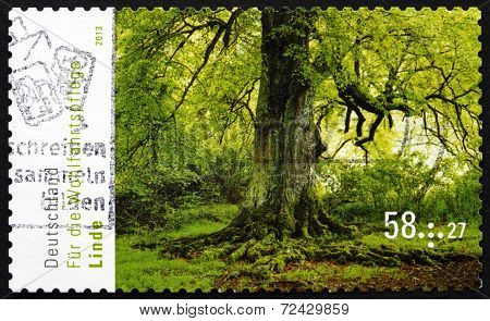 Postage Stamp Germany 2013 Lime Tree, Flowering Tree
