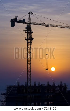 Crane At Sunrise