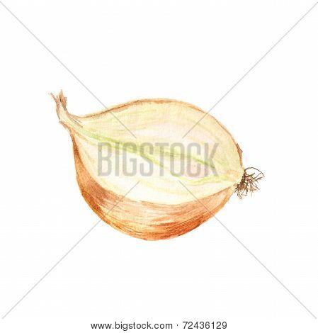 Half of onion