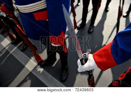 Bayonet Detail During Military Parade