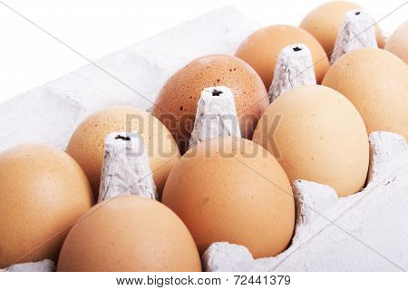 hens eggs in egg carton