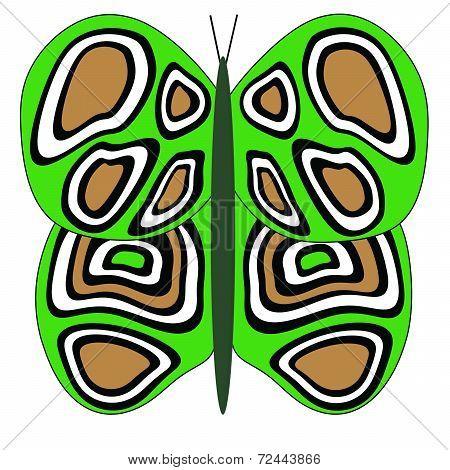 Green-Tan-White Butterfly