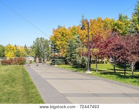 People enjoying Calgary's pathway system