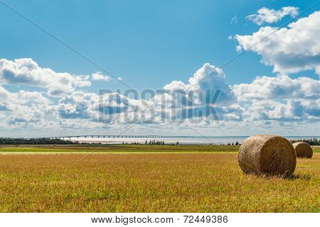 Hay Bales On A Farm Along The Ocean With The Confederation Bridge In The Background