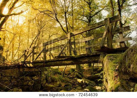 Wood Bridge In Geres
