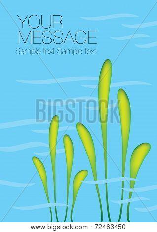 Aquatic Plant Vector Background