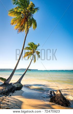 Las Galeras tropical beach in sunset Dominican Republic