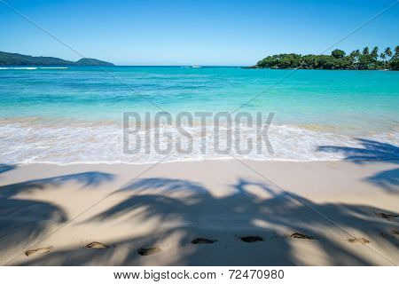 Footsteps in palm trees shadow on perfect tropical beach