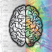 foto of right brain  - Background with human brain left and right part - JPG