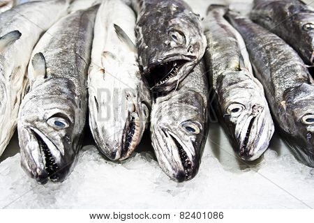 hake in the store