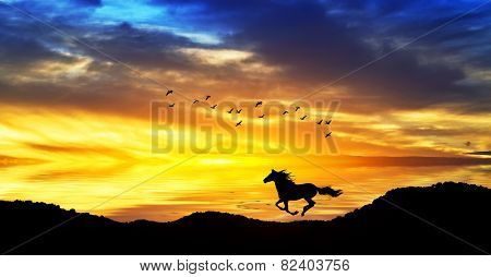 horse running through the mountains at sunset