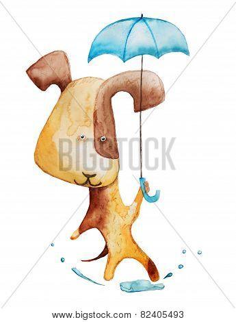 dog with umbrella