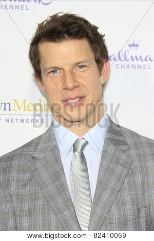 LOS ANGELES - JAN 8: Eric Mabius at the TCA Winter 2015 Event For Hallmark Channel and Hallmark Movies & Mysteries at Tournament House on January 8, 2015 in Pasadena, CA