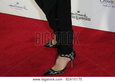 LOS ANGELES - JAN 8: Dr JJ Levenstein at the TCA Winter 2015 Event For Hallmark Channel and Hallmark Movies & Mysteries at Tournament House on January 8, 2015 in Pasadena, CA