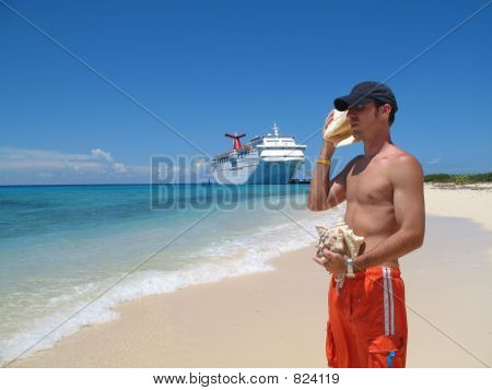 Conch Shell Collector