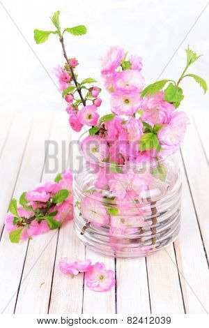 Beautiful fruit blossom in jar on table on light background