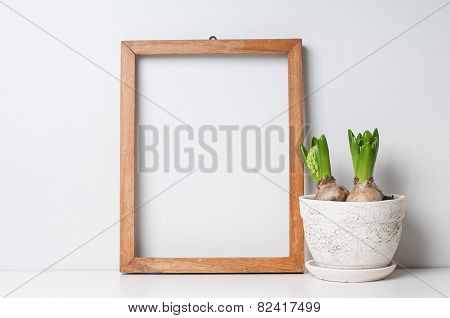 Frame And Plants