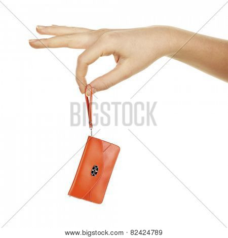 Small female clutch in big hand isolated on white
