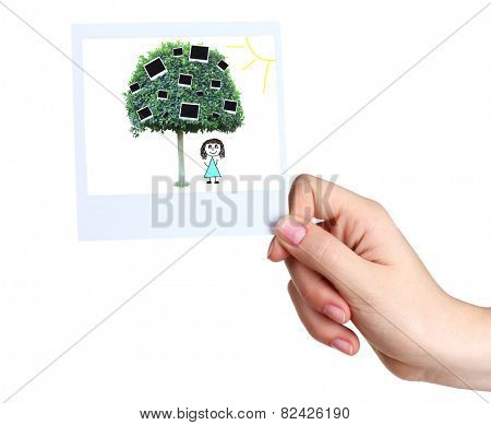 Hand holding photo with green tree and photo cards on it isolated on white