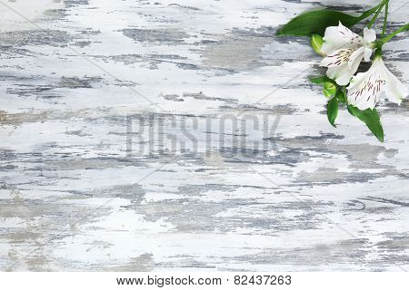 Beautiful Alstroemeria flowers on grey wooden table