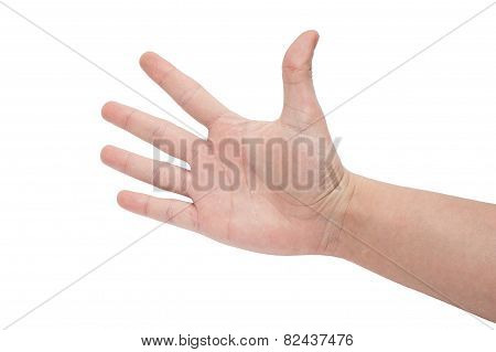 Open Right Hand Showed Five Fingers