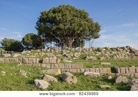 Altar Of Zeus