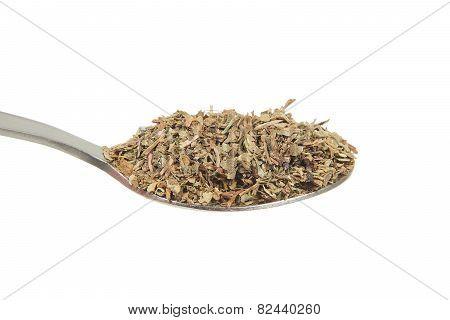 Basil (ocimum Basilicum) On A Teaspoon