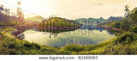 Panorama of the tea plantations at sunrise with reflection in the lake. Adam's peak - conical mountain on the horizon at right. Sri Lanka