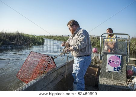 BEAUFORT, SOUTH CAROLINA-MAY 23, 2014: An unidentified commercial fisherman drops a crab trap into an estuary