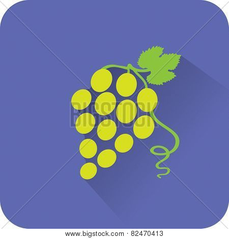 Vine icon. Flat design style modern vector illustration