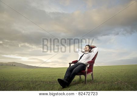 Relaxed businessman in a meadow