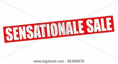 Sensational Sale