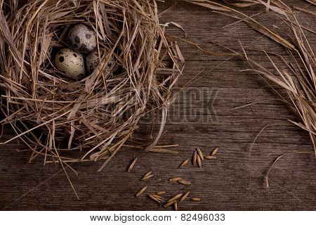 Quail Eggs In Nest On Rustic Straw Wooden Background